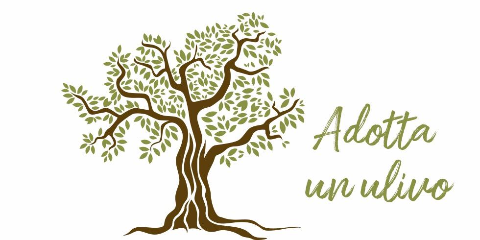 caroli-adotta-un-ulivo