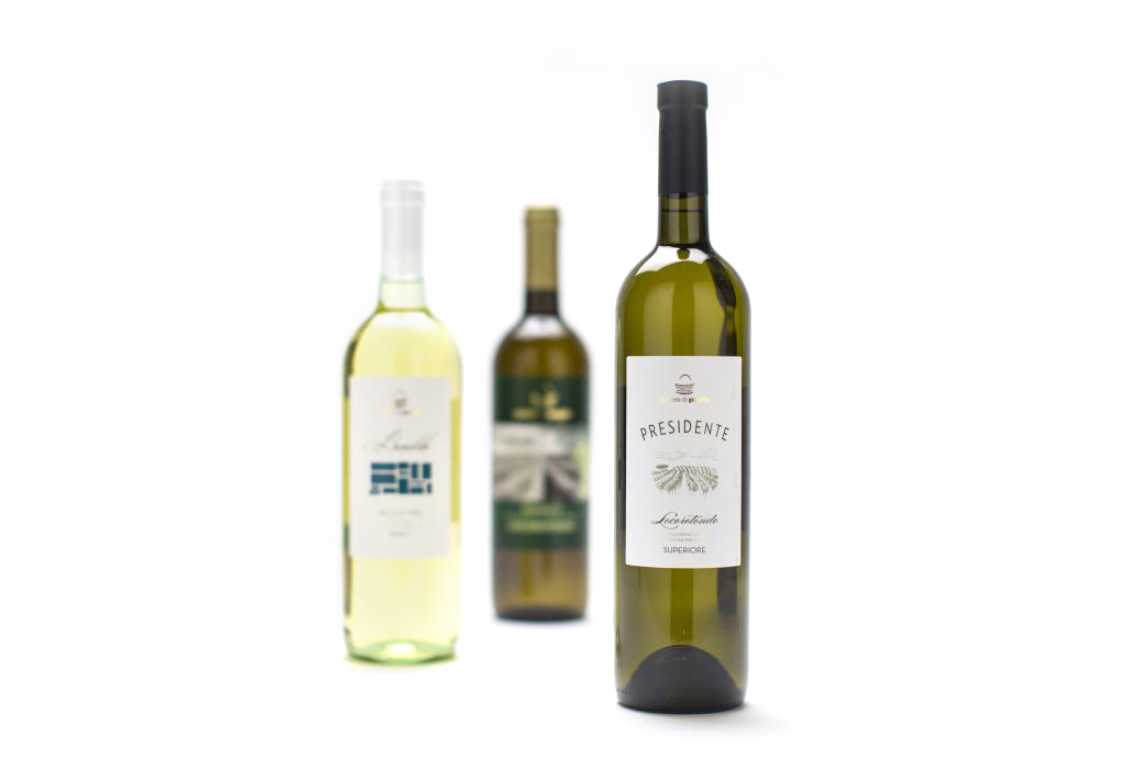 caroli-vini-bianchi-pugliesi